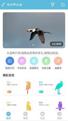 鸟叫声大全手机版_鸟叫声大全安卓版下载